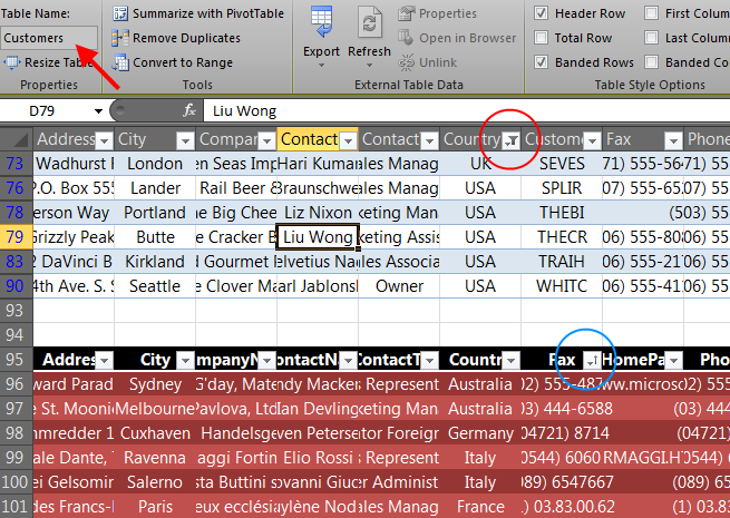File generated by the XAML Excel Engine with named tables exported with defined Style and Filtering/Sorting options.