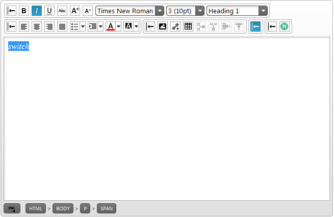 The HTML Editor with Italic enabled and Copy/Paste toolbar collapsed with initialization and a custom toolbar.