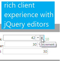 jQuery editors for rich client experience