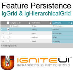 Feature Persistence header image